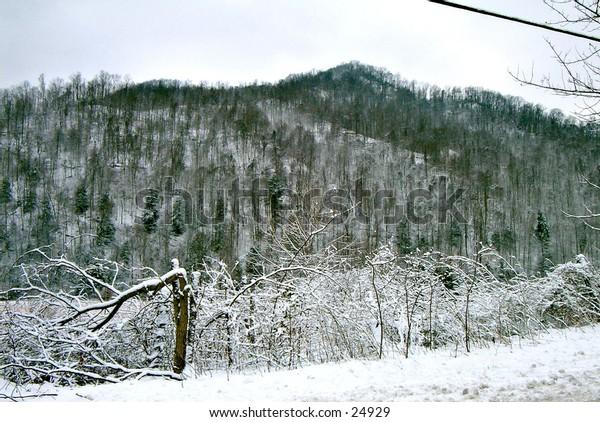 Webster County West Virgina