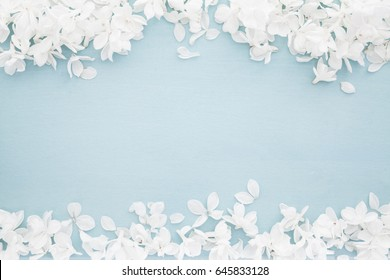 Wedding background with white blossoms on baby blue wood