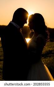 wedding. beautiful  happy couple kissing in the sun