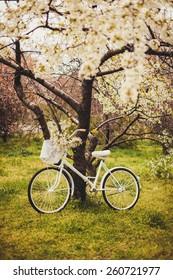 wedding bicycle Outdoors