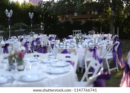 Wedding Birthday Reception Decoration Chairs Tables Stockfoto Jetzt