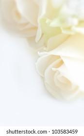 wedding bouquet, wedding background