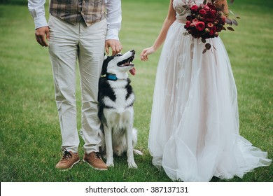 Wedding. Bride. Wedding Dress. Groom. Dog. Bride in cream-colored lace dress and groom in waistcoat standing on a green lawn in the forest. Husky dog is sitting between them. Bride holding a bouquet
