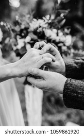 Wedding ceremony or engagement concept. Wedding rings exchange. Groom and bride. Monochrome