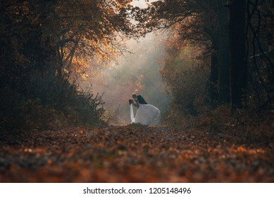 Wedding couple in autumn nature. Young bride and groom dancing together in colorful morning forest