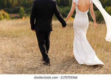 Wedding couple. Bride and groom holding hands and walking at wedding day
