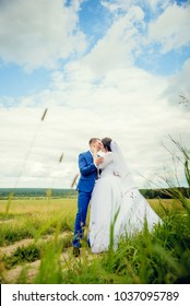 wedding couple, bride and groom walk in the field, wedding walk in summer day outdoors