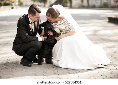 wedding couple dog