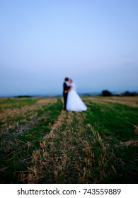 Wedding couple in harvested field