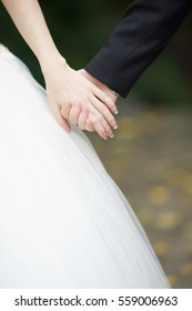 the wedding couple holding hands