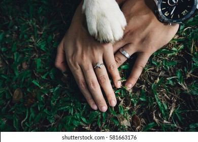 Wedding couple holding hands with dog legs,dog lover concept, spot focus