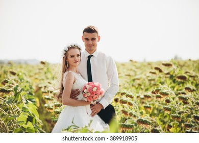 Wedding couple kissing and posing in a field of sunflowers