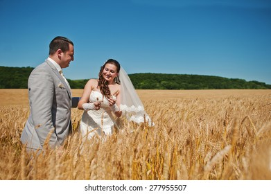 wedding couple loving on wheat