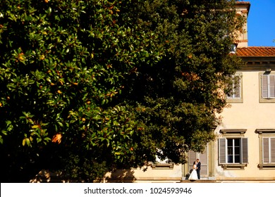 wedding couple posing in front of house with green tree