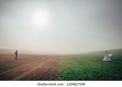 Wedding couple standing solitude in misty morning nature. Bride and groom standing against each other in brown and green field. White edit space in background. Couple therapy concept photo