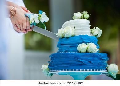 Wedding cutting a wedding cake on wedding day.