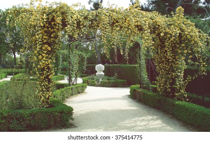 Wedding decoration floral arch of roses