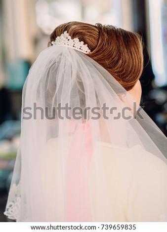 Wedding Hairdo Veil Stock Photo Edit Now 739659835 Shutterstock