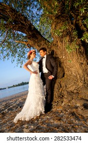 Wedding happy couple below the tree to the river bank on a beautiful sunny day