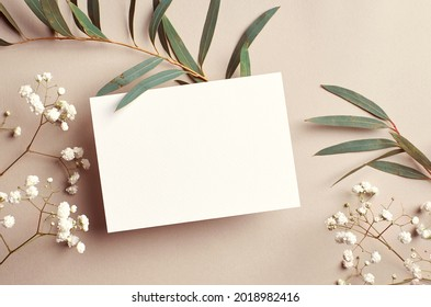 Wedding invitation card mockup with natural eucalyptus and white gypsophila plant twigs. Blank card mockup on beige background.