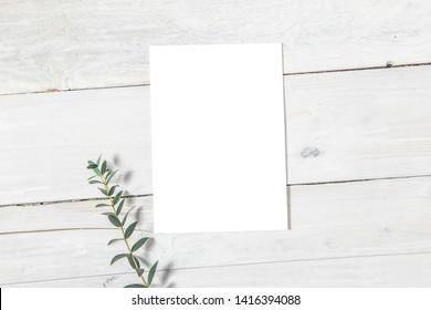 Wedding Invitation Mockup, Blank Invitation Card with a Sprig of Eucalyptus, Styled Stock Image