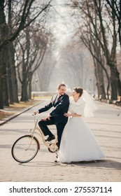 wedding love Wedding on a bicycle Wedding in the park