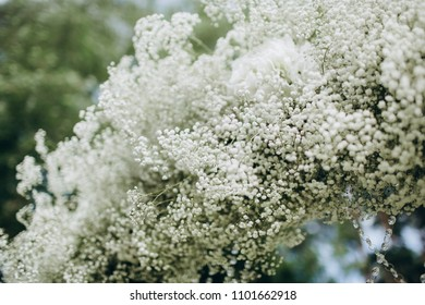 Flower arch images stock photos vectors shutterstock wedding luxury arch of white flowers on green backround mightylinksfo