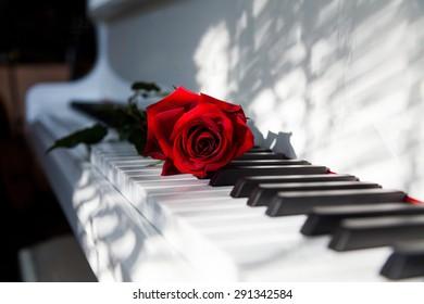 Wedding, Piano, Music.