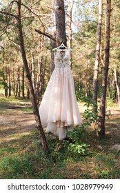 Wedding pink dress on hanger on the tree in the forest. Beautiful gown. Wedding