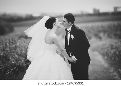 Wedding portrait of a young couple, groom and bride posing