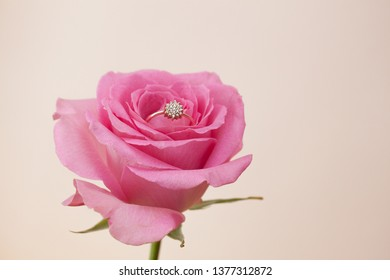 wedding ring with pink rose on ligth background