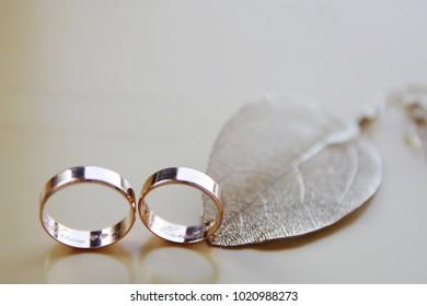 Wedding rings are so beautiful