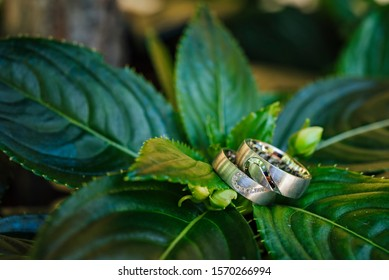 Wedding rings of bride and groom