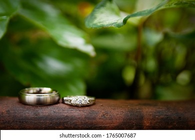 wedding rings with green nature background