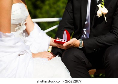 Wedding rings in hand of groom and bride sitting on the bench