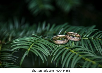 wedding rings leaves
