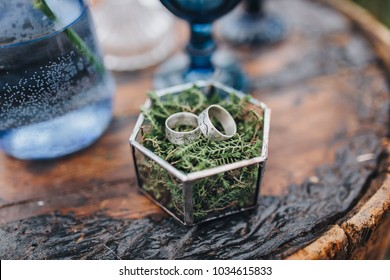 wedding rings lie on greenery in glass box, which stands on old wooden table