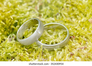 Wedding rings on the natural green moss background. Simple.