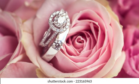 wedding rings on the rose