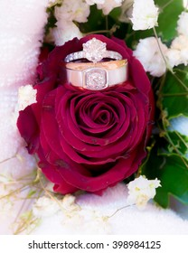 Wedding rings on a rose flowers.