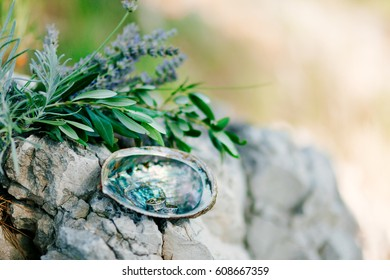 Wedding rings on the stone and the olive branch. Wedding jewelry.