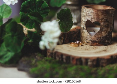 wedding rings on the stump in a green grass