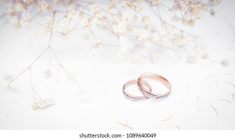 wedding rings on wite paper