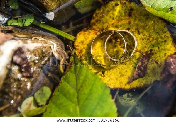 wedding rings in the water
