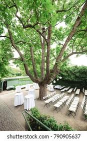 Wedding set up in garden with big tree