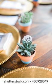 Wedding Succulent Decorations