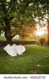 Wedding table under the tree in the sunset