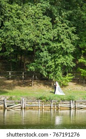 Wedding walking near the lake in the forest