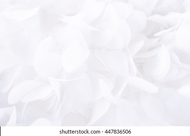 Wedding white abstract background