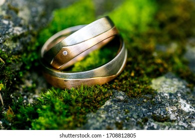 Weddingrings isolated on natural background